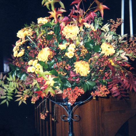 Flower Gallery 10