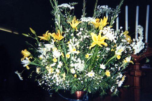 Flower Gallery 11