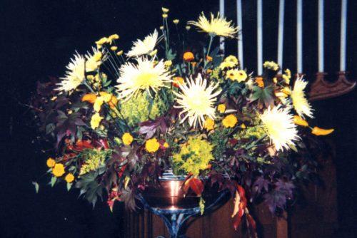 Flower Gallery 12