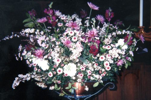 Flower Gallery 13
