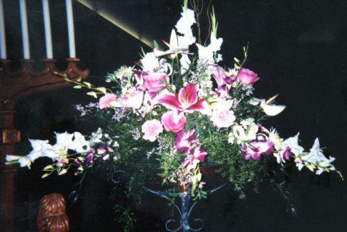 Flower Gallery 14