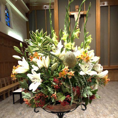 Flower Gallery 15