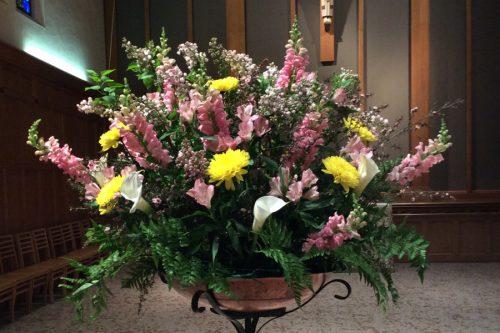 Flower Gallery 16