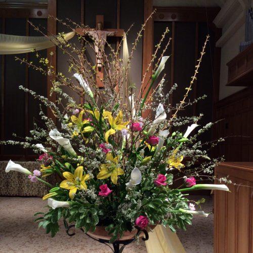 Flower Gallery 17