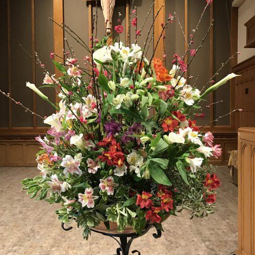 Flower Gallery 19