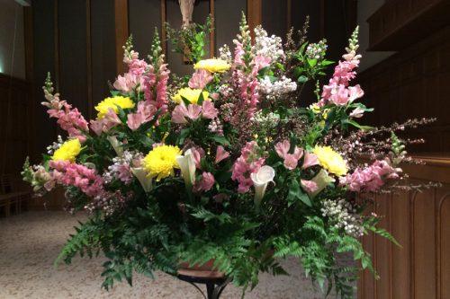 Flower Gallery 23