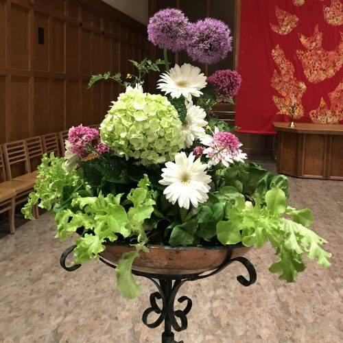 Flower Gallery 3