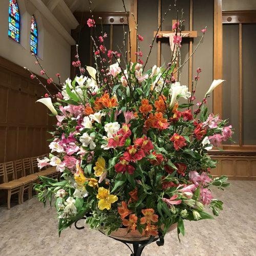 Flower Gallery 6