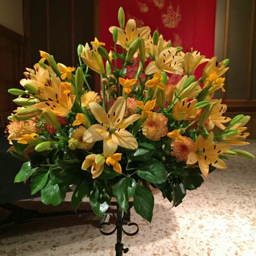 Flower Gallery 7