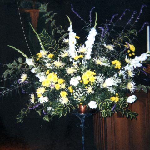 Flower Gallery 9