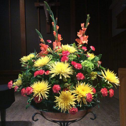 Flowers Gallery 26